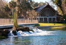 Places to go in Florida