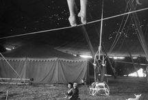 Circus, Theater and Festivals
