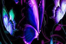 Butterfly / Beautiful