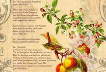 Kräuter und Obst