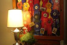 Horse Ribbons
