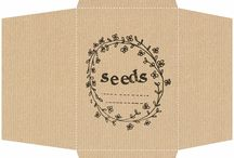 seed packets year 2