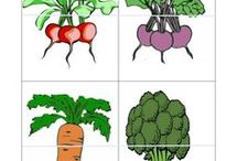 legume timpurii