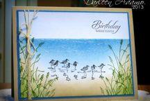 Sandpiper Cards / by Elizabeth Schwerm
