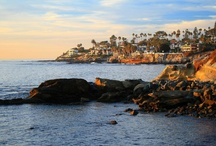Bird Rock - La Jolla CA / Get the latest updates on News, Events, Real Estate, Home Values and more on our Locals Network. Join today at SDConnection.com