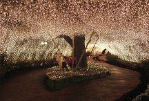 fairy light wedding theme