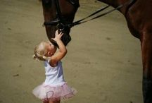 Horse Love / We are crazy about all things horses and here are some of our favorite things!