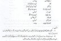 Urdu Food Recipes