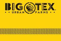 Big Tex Urban Farm / http://bigtex.com/urbanfarm/