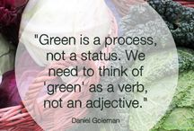 Is that green? / by Becky Durall Voss