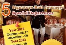 Luxury Train Vacations / by Indian Luxury Trains