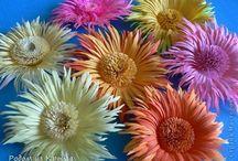 Цветы и всякая милота
