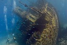 Beauty in Wrecks / by Cebu Bluewaters