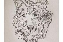 Wolf / Fox