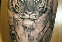 Part of jungle tatoo?? / Jungelkatter
