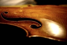 strings. / by Sedalia Rose