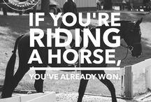 Inspiring Words / Words of Wisdom, Cowboy Advice & Inspiration to Pull You Through the Tough Riding Days.
