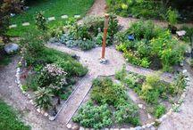 fűszerkert, gyógynövényes kert, herbs garden, healing garden / gyógynövényes kert, healing garden, fűszerkert, herbs garden