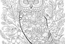 Line Art/ Coloring Book