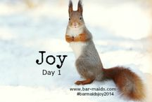 "Joy 2014 / We invite you to share your ""Joy"". Send your pictures to lo-lo@bar-maids.com #barmaidsjoy2014"