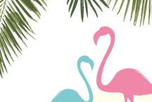 Wallpaper & Flamingo