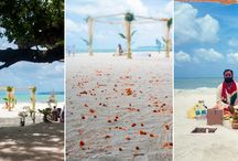 Stunning Beach Weddings in Munjoh Ocean Resort