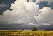 Painting: Renato Muccillo