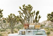 ✈ Travelling the Desert / Desert landscapes, National Parks, Inspirations