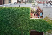 Courtyard House - Toronto / Architects: Christine Ho Ping Kong and Peter Tan http://studiojunction.ca/