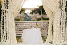 Wedding Planner / by Pam Sclafani