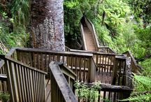 NZ places to go