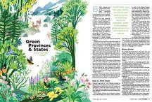 Books & Magazines / Editorial Design