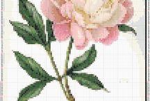 haft krzyżykowy - cross stitch