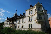 Ławica - Pałac