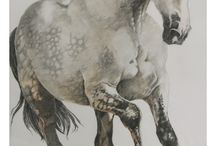 pencil-drawings / white horse running