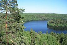 Kansallispuisto, luonnonpuisto, suojelualue, retkeilyalue / Kuvia Suomen kansallispuistoista, luonnonpuistoista,  suojelualueilta sekä retkeilyalueilta