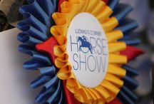 2016 Horse Show