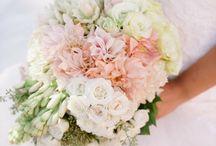 Blushing Bride ... / by Terri Lindahl-Castro