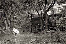 John Wehrheim - Taylor Camp / What Life Was Like in Taylor Camp, Hawaii's Legendary Hippie Haven, 1969