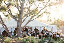Outdoor Wedding Venues / www.elizabethlloydphotography.com https://www.facebook.com/ElizabethLloydPhoto Fun, fresh, romantic & In the moment Wedding Photography