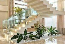 Plantas de interiores