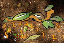 Lombricompost / Je cherche une façon de réduire et valoriser les déchets organiques, et pourquoi pas trouver de quoi cultiver des petits légumes en milieu urbain