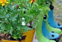 Garden Greatness