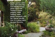 Our Tuscan Garden