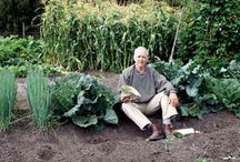 Great garden ideas!