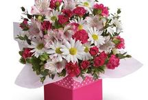 Celebration Flowers / CELEBRATIONS: There are numerouse reasons to celebrate and sending flowers to share the excitement is a great way to send your congratulations. Order online a bouquet or floral arrangement and we will deliver for you for birthdays, parties, New Born Baby...