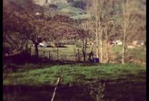 Asturias / El paraíso existe
