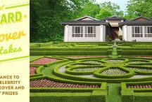 Backyard Makeover Sweepstakes / Get information about TruGreen's spring sweepstakes, daily prizes, grand prize lawn makeover and more!  / by TruGreen