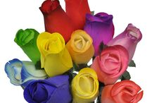 Wedding Ideas / Wedding, bouquet, bride, anniversaries and so many more