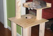 дом кошки